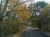 Droga Brzeziny-Stryków